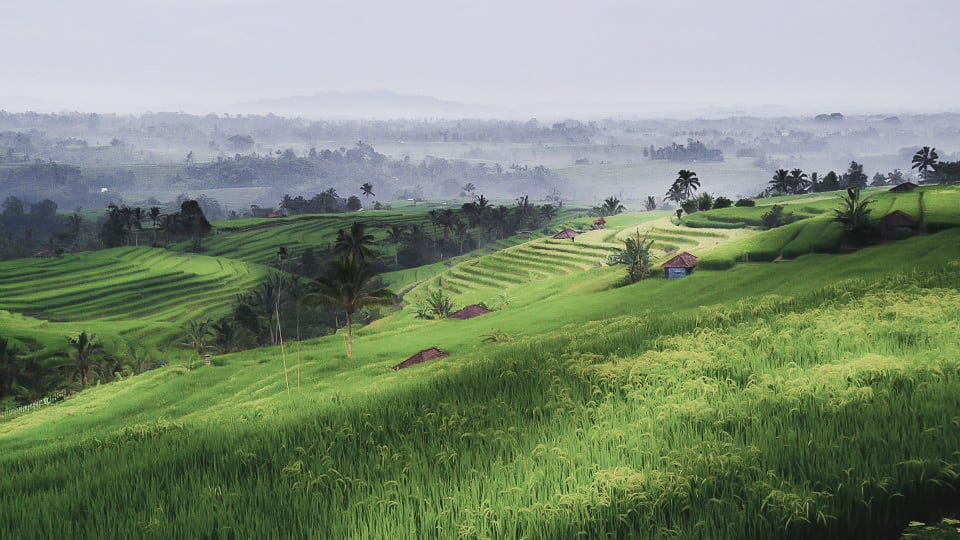 Bali Landscape Travel Photography